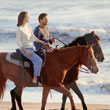Guided Horseback Beach Ride