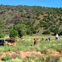 Goat Ranch Getaway Adventure